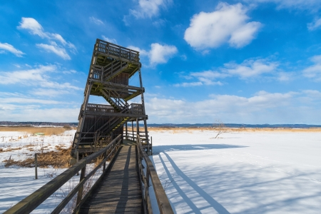 Birdwatching tower in preservation of nature - Winter landscape