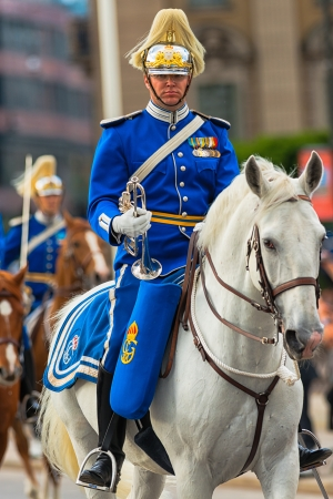 STOCKHOLM, Sweden - JUNE 8: The Royal Wedding between Princess Madeleine and Chris O�Neill and the royal guards before the carriage. June 8, 2013, Stockholm, Sweden