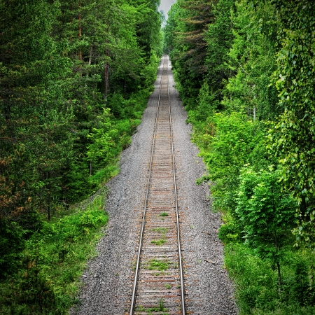 View of an old abandoned railway track through a green forest, Sweden Stock Photo - 20446936