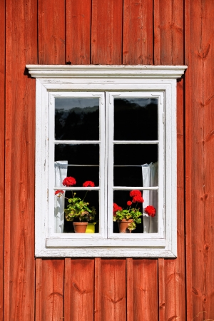White window with red flowers and red old tree house, �land, Finland