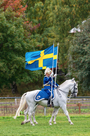 STOCKHOLM - SEP, 22  Two riders from the mounted guard entering the arena with swedish flags in The Mounted Guard event for the public in Ryttarstadion Sep 22, 2013 in Stockholm, Sweden