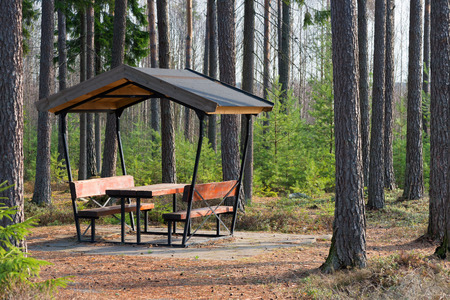 Rest area in the forest besides the highway during spring, Sweden photo