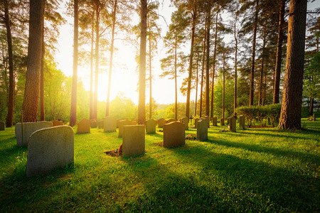 Graveyard in sunset with warm light and feeling and shadows falling from trees and headstones Foto de archivo