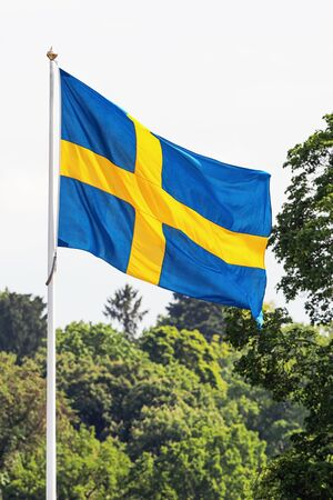 Swedish flag waving in forest surroundings photo