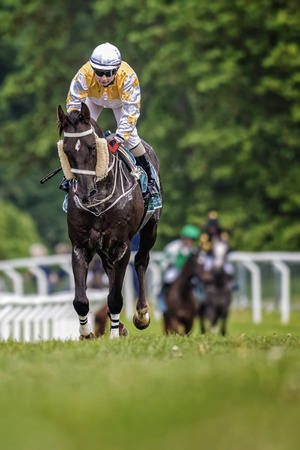 stride: STOCKHOLM - JUNE 6: Jockey in a warm up race during the race at the Nationaldags Galoppen at Gardet. June 6, 2015 in Stockholm, Sweden.