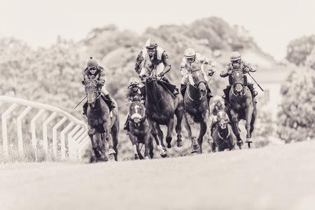 corse di cavalli: STOCCOLMA, SVEZIA - 6 giugno 2015: Cavalli con fantini su una curva a ritmo veloce a Nationaldagsgaloppen a Gardet. Filtro Seppia applicato