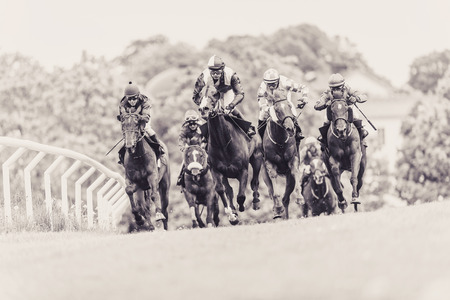 STOCKHOLM, SWEDEN - JUN 6, 2015: Horses with jockeys out of a curve in fast pace at Nationaldagsgaloppen at Gardet. Sepia filter applied Sajtókép