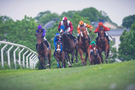 corse di cavalli: STOCCOLMA, SVEZIA - 6 giugno 2015: Cavalli con fantini su una curva a ritmo veloce a Nationaldagsgaloppen a Gardet. Filtri applicati Editoriali
