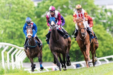 horse race: STOCKHOLM, SWEDEN - JUN 6, 2015: Horses with jockeys out of a curve in fast pace at Nationaldagsgaloppen at Gardet.