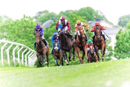 jockey's: STOCKHOLM, SWEDEN - JUN 6, 2015: Horses with jockeys out of a curve in fast pace at Nationaldagsgaloppen at Gardet.
