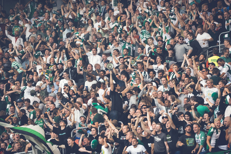 rivals: STOCKHOLM, SWEDEN - AUG 24, 2015: The fans of Hammarby after a goal in the soccer game the rivals Djurgarden and Hammarby at Tele2 arena.