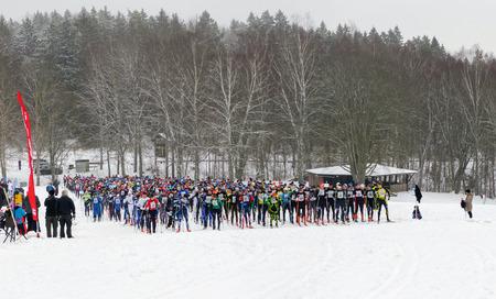 nordic ski: STOCKHOLM, SWEDEN - JAN 24, 2016: Starting field of the Ski Marathon in nordic skiing classic style. Panorama Editorial