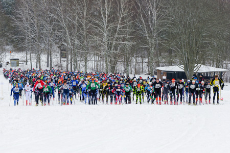 start to cross: STOCKHOLM, SWEDEN - JAN 24, 2016: The start of the Ski Marathon in cross country in classic style. 40 Km