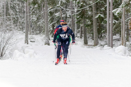 nordic ski: STOCKHOLM, SWEDEN - JAN 24, 2016: Ski runners in the forest during the Ski Marathon in nordic skiing classic style. Lida in Stockholm. Editorial