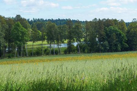 Farmland on a hillside with a river. Sweden