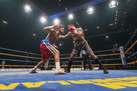 ringside: STOCKHOLM, SWEDEN - SEPT 10, 2016: Match between Anthony Yigit (SWE) vs Armando Robles (MEX) in super lightweight at The winner takes it all event in boxing. Winner Anthony Yigit