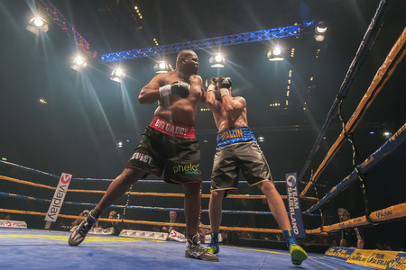 the heavyweight: STOCKHOLM, SWEDEN - SEPT 10, 2016: Match between Otto Wallin (SWE) vs Osbourne Machimana (RSA) in heavyweight at The winner takes it all event in boxing. Winner Otto Wallin