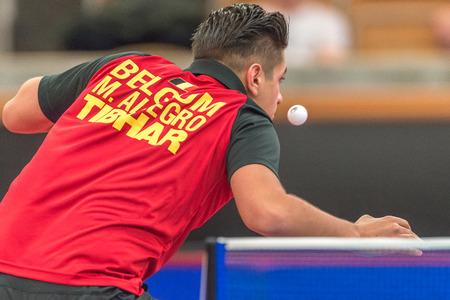 allegro: STOCKHOLM, SWEDEN - NOV 18, 2016: Par Gerell (SWE) vs Martin Allegro (BEL) at the table tennis tournament SOC at the arena Eriksdalshallen in Stockholm.