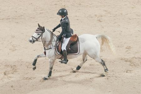 Solna, Schweden - 26. November, 2016: Saga Passmark im Prinz Carl Philip Preis Ereignis in ponny beim Sweden International Horse Show in Friends Arena zu springen. Editorial