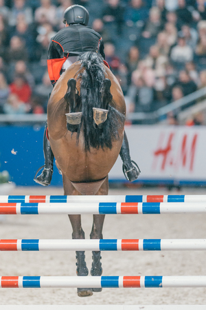 SOLNA, SWEDEN - NOV 27, 2016: Peder Fredricson at the Friends Christmas Speed Jumping in the Sweden International Horse Show at Friends arena.