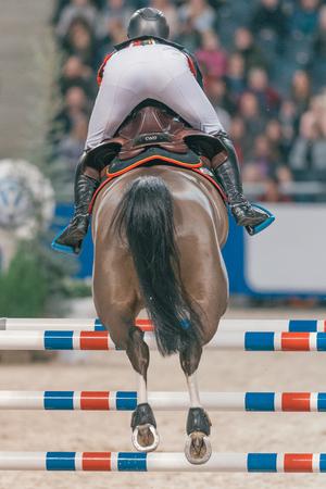 uomo a cavallo: Solna, Svezia - 27 novembre, 2016: Peder Fredricson in Amici di Natale velocità di salto in Svezia Ippico Internazionale a Friends Arena. Editoriali