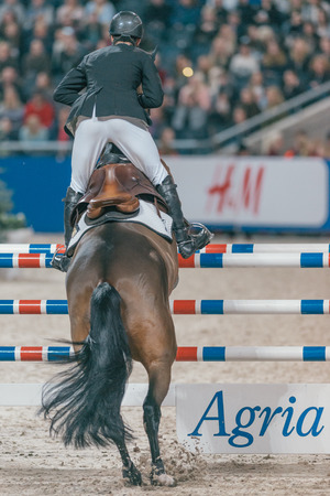 SOLNA, SWEDEN - NOV 27, 2016: Friends Christmas Speed Jumping in the Sweden International Horse Show at Friends arena.