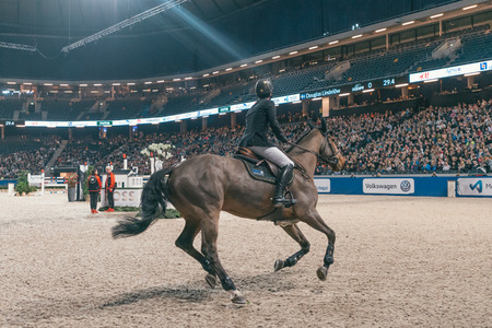 SOLNA, SWEDEN - NOV 27, 2016: Douglas Lindelow at the Sweden Masters Last Man Standing in the Sweden International Horse Show at Friends arena.