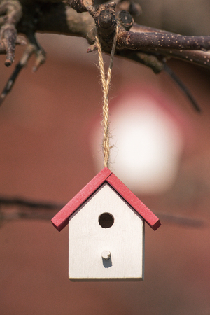 Small cute house for insects in red and white during spring on a fruit tree branch.