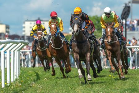高速でカーブを曲がって騎手とストックホルム, スウェーデン - 2017 年 6 月 6 日: 馬 Gardet で Nationaldagsgaloppen ペース。