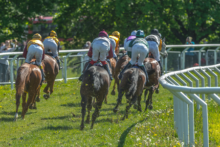 pace: STOCKHOLM, SWEDEN - JUN 6, 2017: Back of horses with jockeys out of a curve in fast pace at Nationaldagsgaloppen at Gardet.