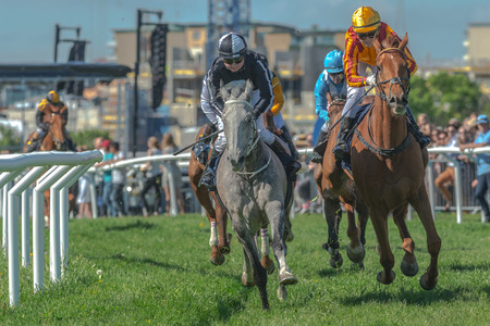 pace: STOCKHOLM, SWEDEN - JUN 6, 2017: Horses with jockeys out of a curve in fast pace at Nationaldagsgaloppen at Gardet.