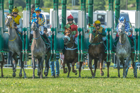 compete: STOCKHOLM, SWEDEN - JUN 6, 2017: Start sequence with fast horses and jockeys at Nationaldagsgaloppen at Gardet.