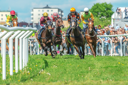 compete: STOCKHOLM, SWEDEN - JUN 6, 2017: Horses with jockeys out of a curve in fast pace at Nationaldagsgaloppen at Gardet.
