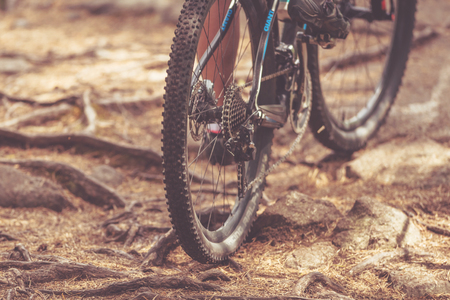applied: TULLINGE, SWEDEN - JUN 11, 2017: Detail of back wheel over roots in forest at the mountainbike event Lida Loop in the forests outside of Stockholm. Filters applied
