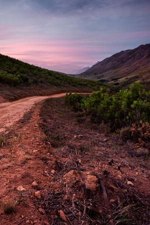 wine road: Dirt road in the Cape Wine lands