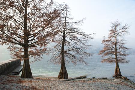 autumn on the lake Stok Fotoğraf