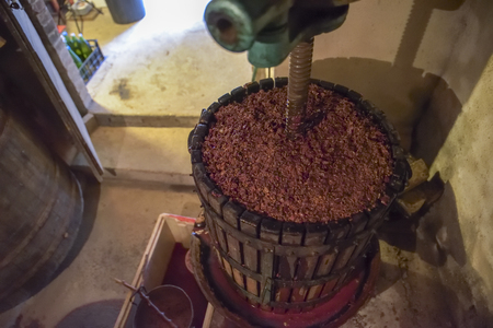 Winemaking. Old wooden wine press with must inside. Pressing of grapes for red wine