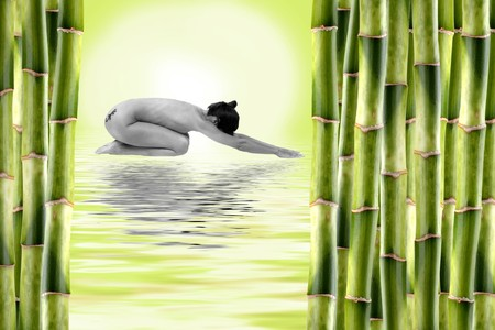 Nude woman surrounded by bamboo shoots and water with reflexion