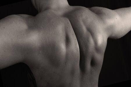 Muscular Back of a Bodybuilder over Black