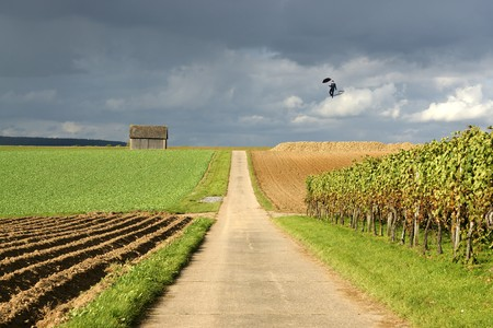 Businessman walking in the clouds with an open umbrella photo