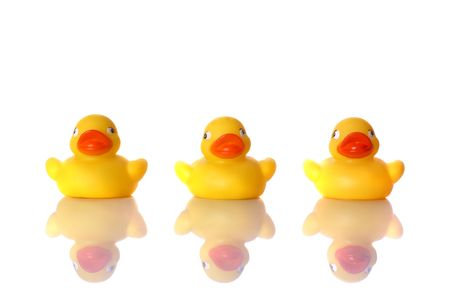 Three little Rubber ducks sitting in a row with reflection