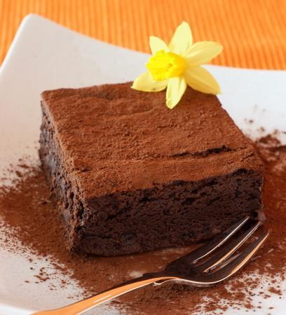 Chocolate Fudge Brownie devorated with daffodil on white plate Reklamní fotografie