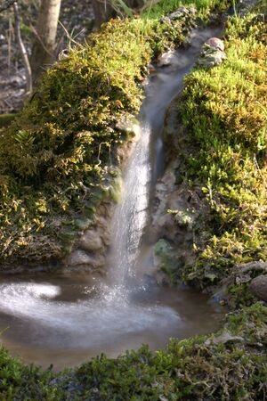 springwater: Fresh spring water with bubbles and moss
