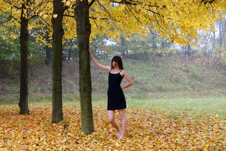 careless: Lonely woman in autumn surroundings
