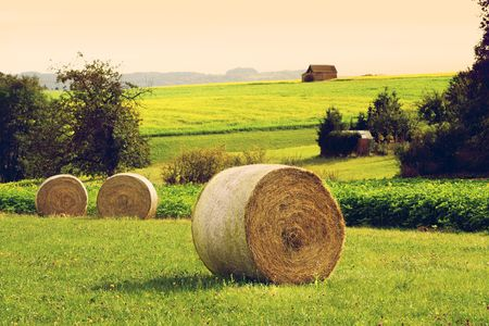 Straw bales on field in romantic settings Stock Photo