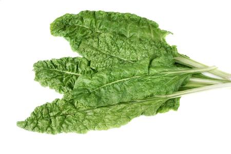 chard: Fresh organic Swiss chard over white Stock Photo
