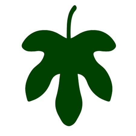 Fig Leaf Vector