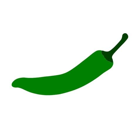 Green Chili Pepper Vector