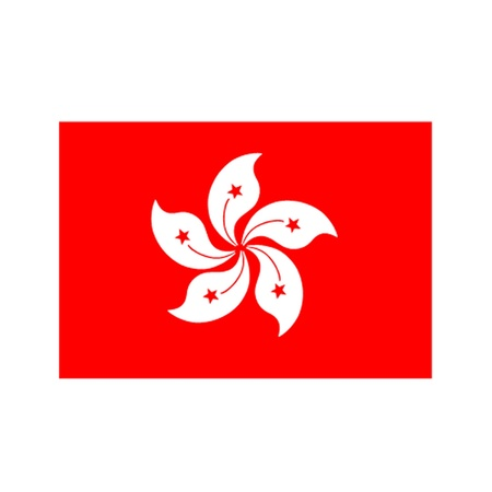 Flag of Hong Kong Stock Vector - 11968258