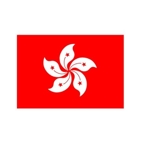 Flag of Hong Kong Stock Vector - 11968258